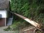 Einsatz: Sturmschäden in der Kirchstraße
